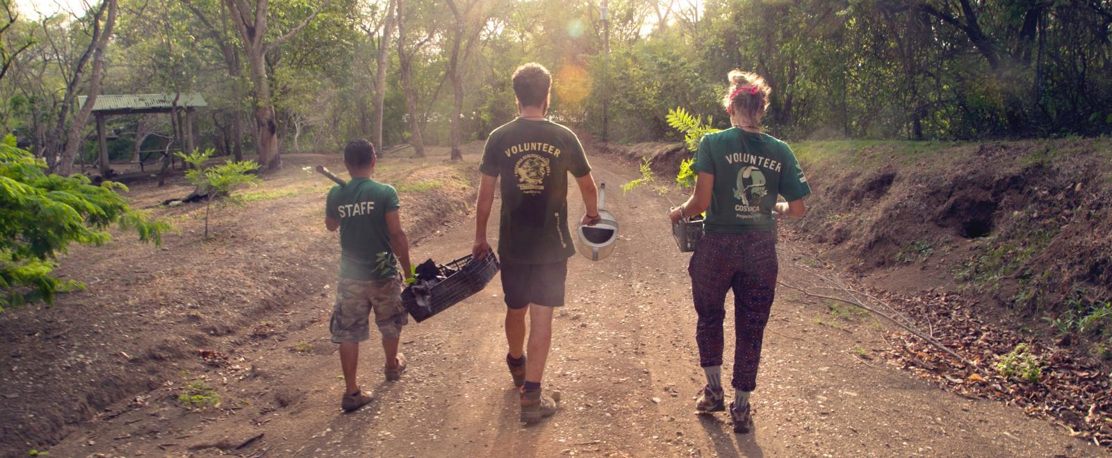 Volontärer som planterar träd på vårt naturskyddsprojekt utomlands.